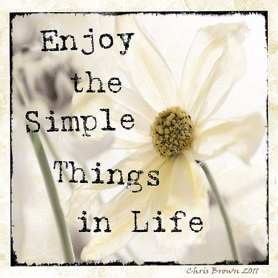 The Simple Thing In Life